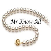 Mr. Know-All